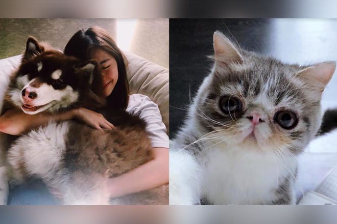 LOOK: Meet Janella's stress relievers in these 19 photos